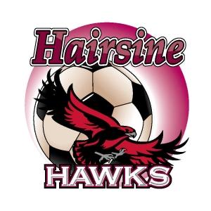 New Hairsine Logo-1